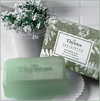 The Thymes Eucalyptus