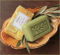 The Thymes Olive Leaf